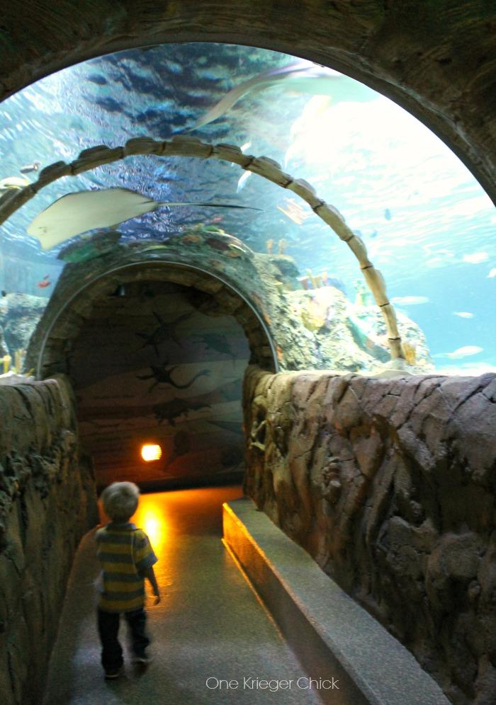 Holiday Fun at Legoland and Sea Life Aquarium Kansas City (plus a coupon!!) - onekriegerchick
